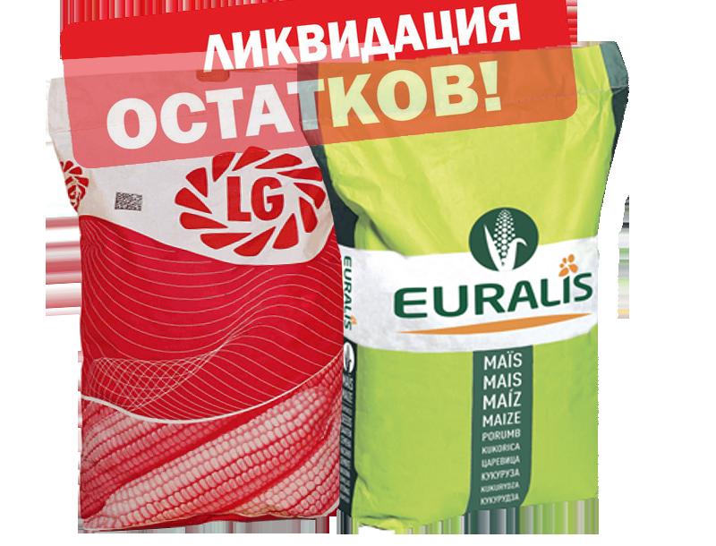 Осенняя распродажа семян подсолнечника и кукурузы!!!!!
