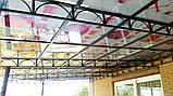 Профільований  полікарбонат Borrex 1.05*2м прозорий, фото 6