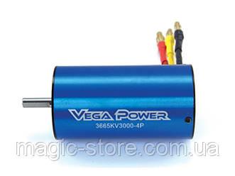 Sensorless Brushless Motor 11T 3665KV3000-5.0 Shaft Banana Plug Blue color