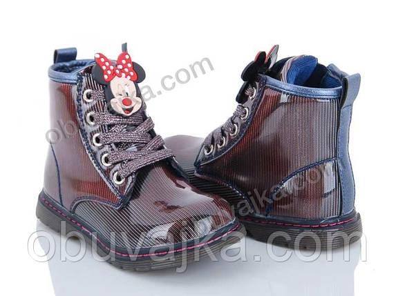 Демисезонная обувь Ботиночки для девочек от фирмы С Луч(26-31), фото 2
