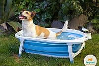 Ванна для собак Dog Splash, фото 1