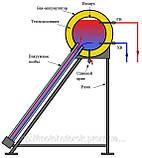 Солнечный коллектор ASD-S2-10 (термосифонная система), фото 3