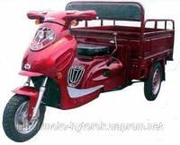 Грузовой мотоцикл FT 110 ZY