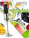 Погружной блендер (блендер, миксер, чопер) Camry CR 4612 + комплект, емкость 800 мл, фото 8