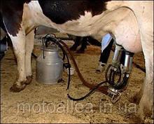 "Доильный аппарат (доїльний апарат) для коров ""Буренка"", ""Березка"", овец, коз ""Белка"""