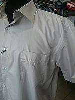 Рубашка мужская серая  батал