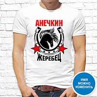 """Футболка именная с принтом """"Анечкин жеребец"""" Push IT"""