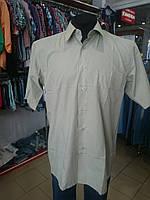 Рубашка мужская однотонная хаки (39,40,41)