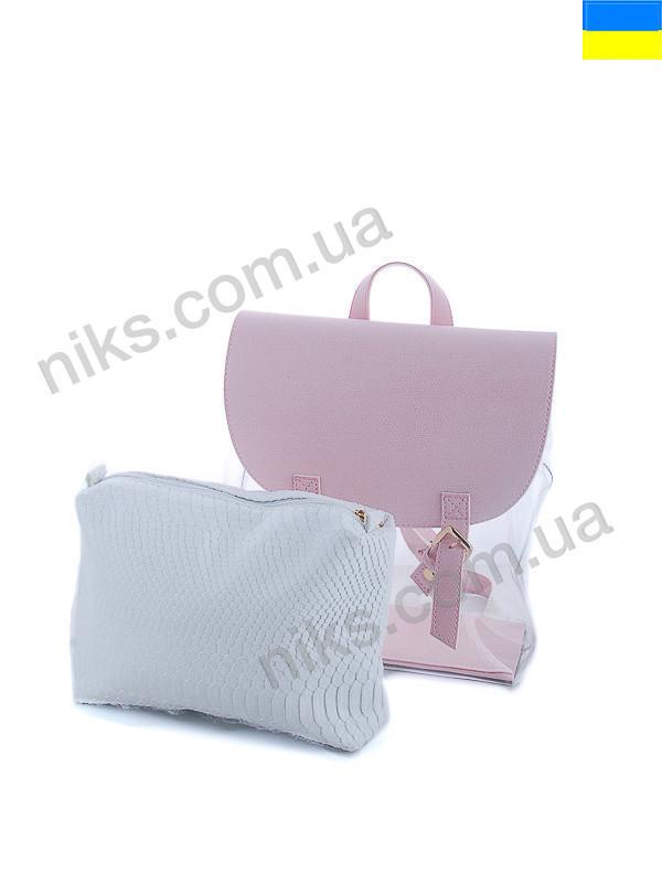 Рюкзак женский силиконовый + косметичка 28*25 WeLassie