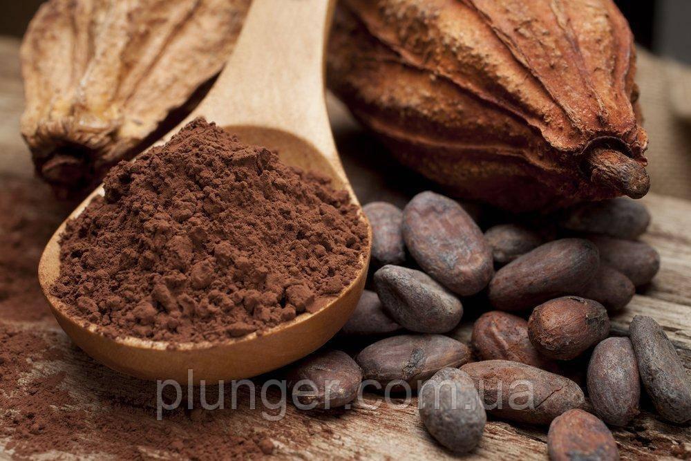 Какао-порошок темный алкализированный Premium 22-24%, DeZaan (цена за 50 г)