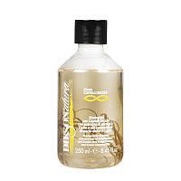 Шампунь Dikson Secchi для сухих волос с экстрактом безсметртника и липы 250 мл