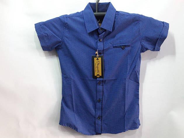 Рубашка для мальчика с коротким рукавом р. 7-12 лет опт, фото 2