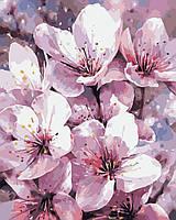 Картины по номерам / обложка. Чарующая Весна  40х50см арт. КНО2946