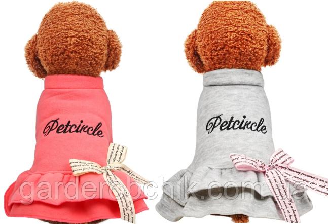 """Платье теплое, толстовка  """"ГЕРДА"""" для собаки, кошки. Одежда для собак, кошек."""