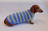 Вязанная теплая одежда для собаки,свитер для таксы,свитер для собаки,теплая одежда для собаки, фото 2