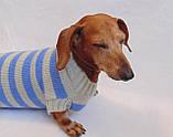 Вязанная теплая одежда для собаки,свитер для таксы,свитер для собаки,теплая одежда для собаки, фото 3