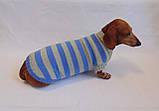 Вязанная теплая одежда для собаки,свитер для таксы,свитер для собаки,теплая одежда для собаки, фото 6