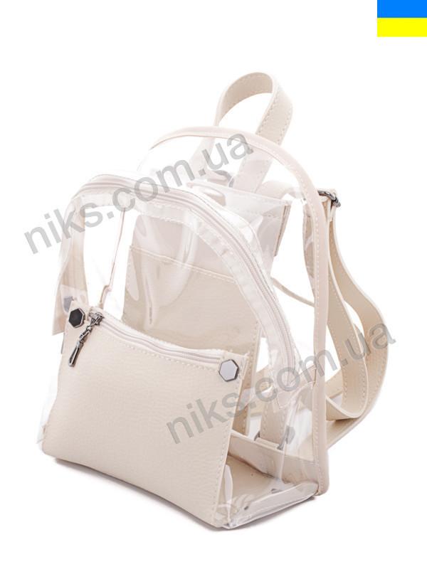 Рюкзак женский силиконовый 25*20 WeLassie