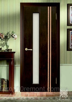 Двері Фенікс серія Моноліт полотно Відень, фото 2