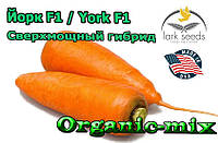 Сверхмощный гибрид моркови Йорк F1 / York F1 от ТМ Lark Seeds (США) , 250 000 семян, фракция 1,8-2,0 мм