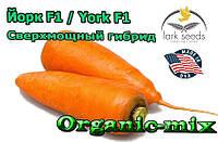 Сверхмощный гибрид моркови Йорк F1 / York F1 от ТМ Lark Seeds (США) , 250 000 семян, фракция 2,0-2,4 мм