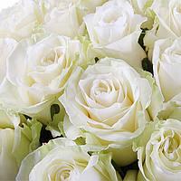 Роза белая  отдушка, Роскосметика - 10 мл