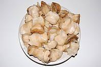 Свежемороженое мясо рапаны черноморской