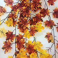 Осенние листья.Декоративный ампельный куст.