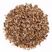 Расторопши семена лекарственные, 1 кг