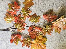 Кленовый осенний лист., фото 3