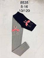 Лосины брюки для девочек , F&D, 14,16 рр.