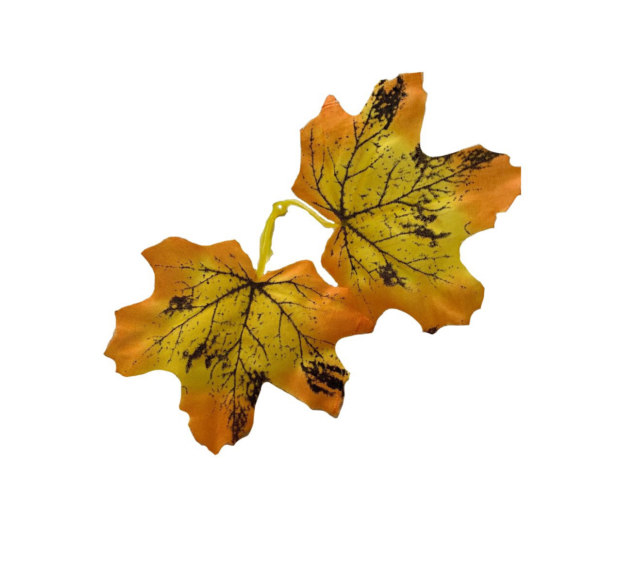 Лист клена желтый.