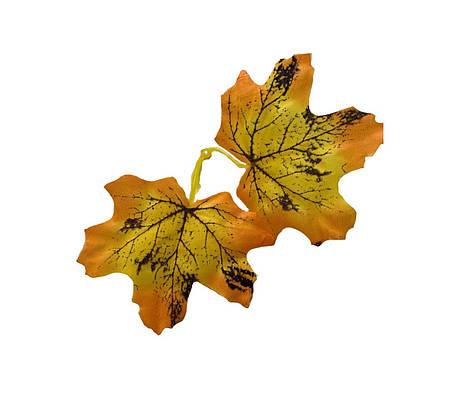 Лист клена желтый., фото 2