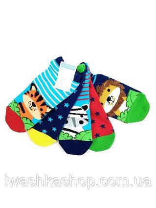 Комплект ярких носков с животными для мальчика 1 - 2 лет, Primark р. 19 -22