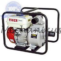 Насос бензиновий Tiger TWP20C