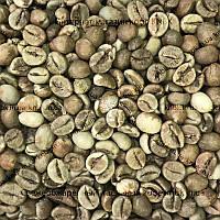 Робуста Уганда (Robusta Uganda) 500г. ЗЕЛЕНЫЙ кофе