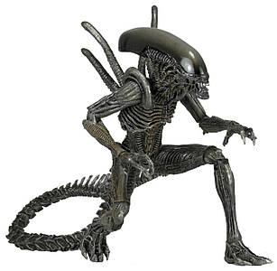 ФигуркаNECA ALIENAvP (Alien vs. Predator.Чужой против Хищника). Warrior Alien