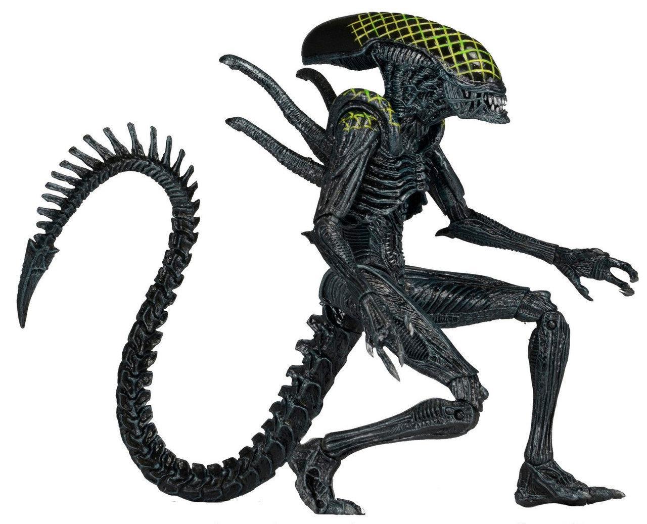 Фигурка NECA ALIEN AvP (Alien vs. Predator. Чужой против Хищника). Grid Alien