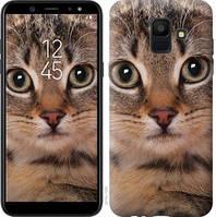 Чехол Endorphone на Samsung Galaxy A6 2018 Полосатый котик 2978c-1480-18675 (2978-1480)