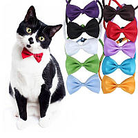 Краватка метелик для кішок