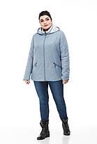 Красивая короткая куртка Большие размеры осенняя 48,50,52,54,56,58,60, фото 3