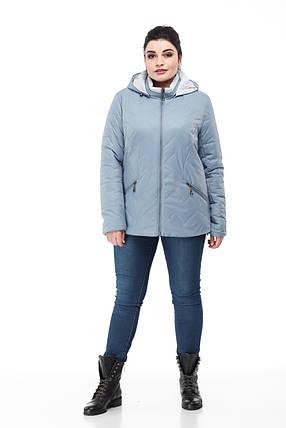 Красивая короткая куртка Большие размеры осенняя 48,50,52,54,56,58,60, фото 2