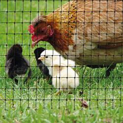 Сетка для птичников У-13 (яч.13ммх15мм) 2х5м цвет черный