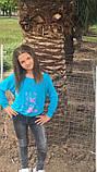 Модный детский трикотажный свитшот,размеры:134,140,146., фото 2