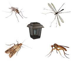 Знищувачі комах