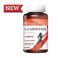 Nutriplus L-Carnitine карнитин 60капсул Farmasi.