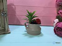 В кувшине суккуленты 6/8 см декор для дома офиса или на подарок
