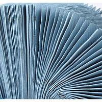Полотенца бумажные ECO Тиша из голубая макулатура 200 листов