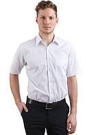 Мужские тениски от производителя