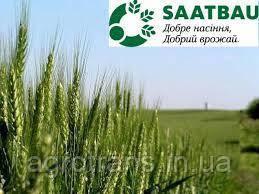 Пшеница озимая, Лупидур, 1-репродукция, Saatbau, Австрия